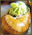 escargot gros gris en coquille à la bourguignonne